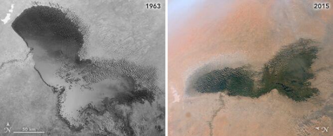 Zmiany powierzchni jeziora Chad (NASA JSC)